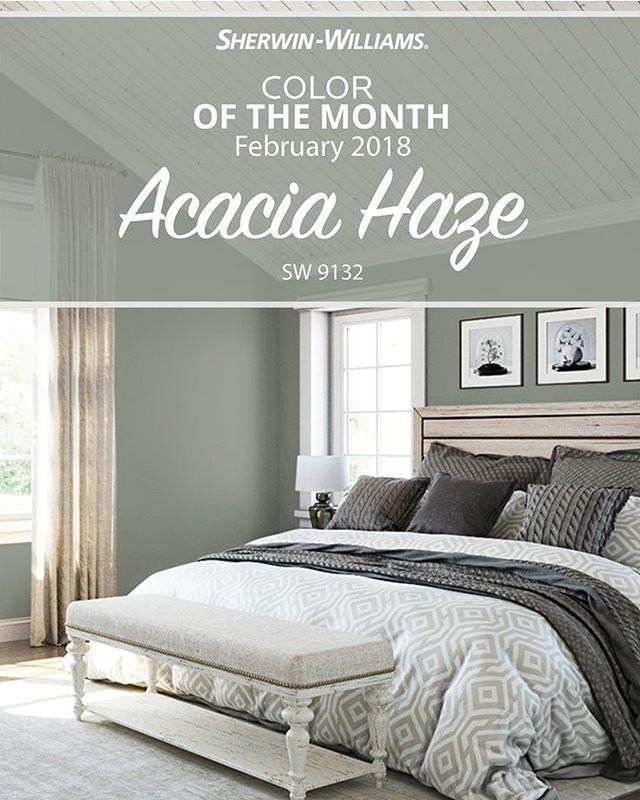 Acacia Haze 2 Tampa Cabinet Store